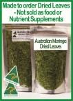 Moringa Leaves 100g – made to order